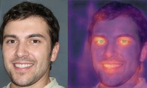 The heat map at right shows computer manipulation of the image at left.